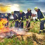 Ganztagesausbildung  Vegetationsbrandbekämpfung