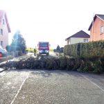 Orkan Friederike zieht über Fernwald