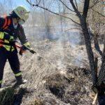 Waldbrand in Annerod – Konzept greift